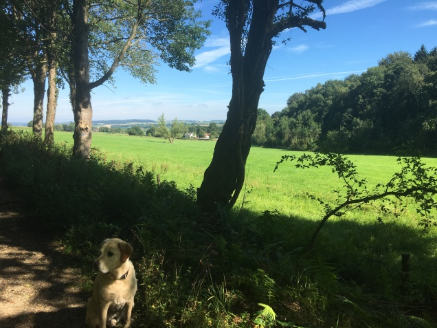 zomerblog tm7 aug 161