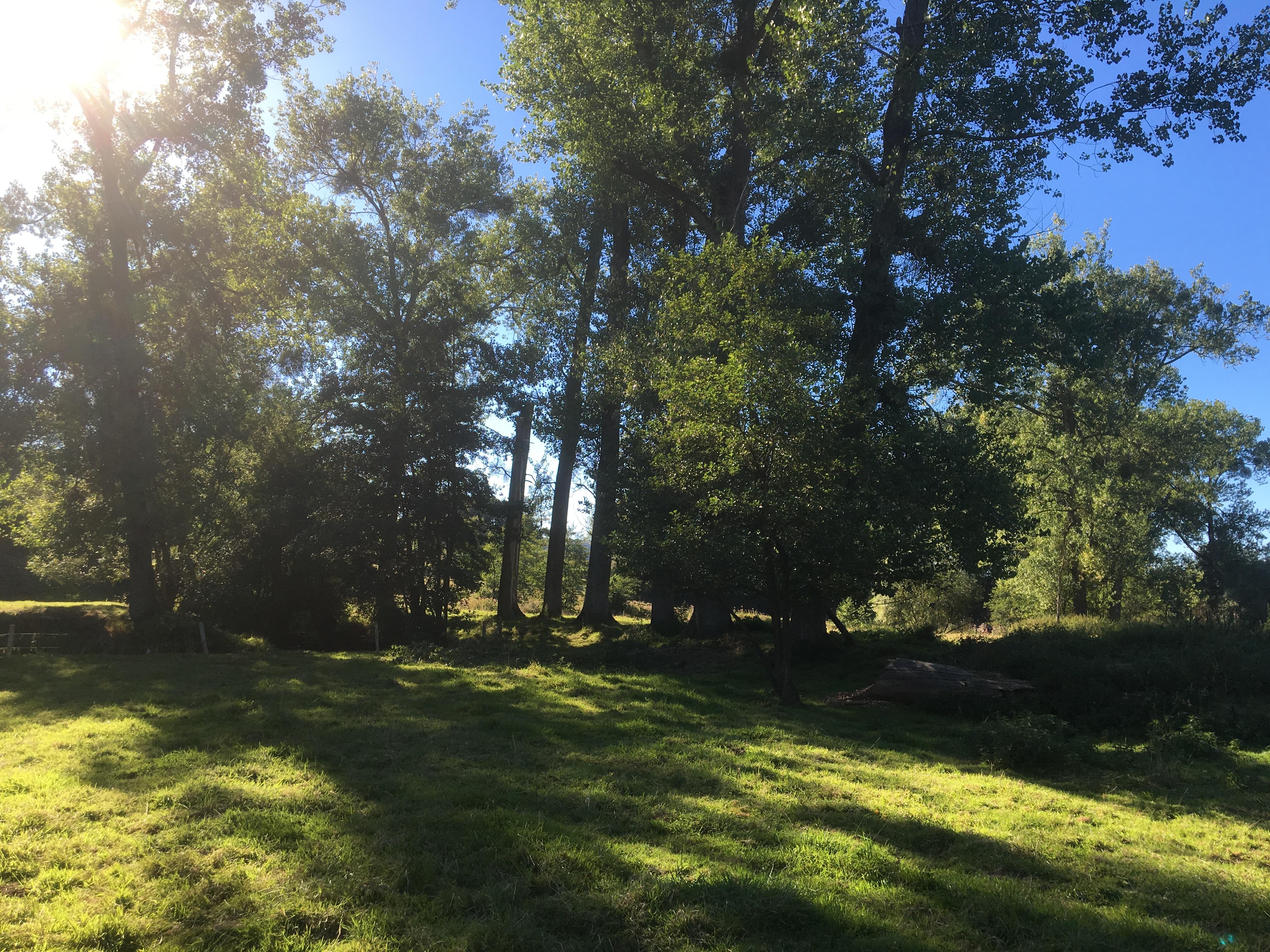 Huis huren zuid limburg – bas hoogland