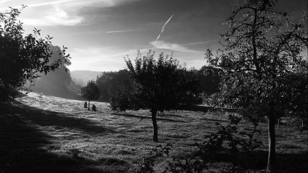 zwartwit fotos landschappen 009