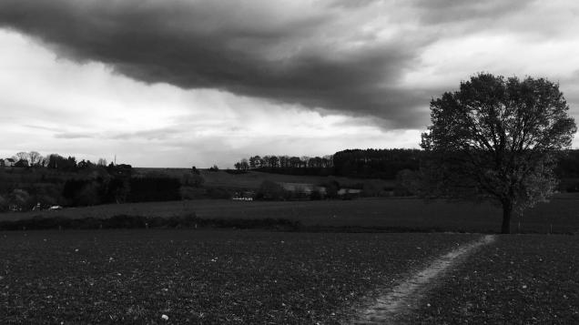 zwartwit fotos landschappen 011