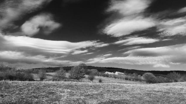zwartwit fotos landschappen 014